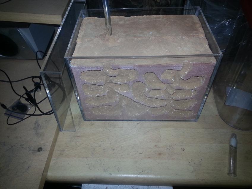 composant colle beton c llulaire fourmili res en b ton cellulaire. Black Bedroom Furniture Sets. Home Design Ideas